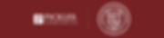 EmailHeader-PARTNERSHIP-MAROON.png