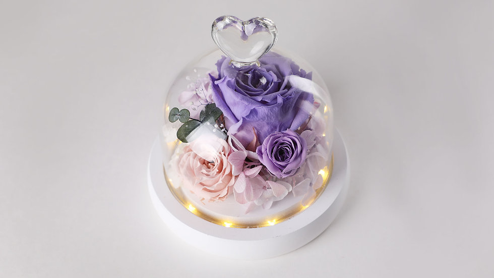 Glass dome with light_Purple