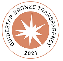 2021-Bronze-Outreach-Badge.png