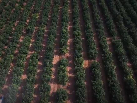 Israëlische startup wil de landbouw digitaliseren