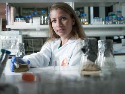 Kunstmatige zoetstoffen kunnen spijsverteringsproblemen en ongemak veroorzaken