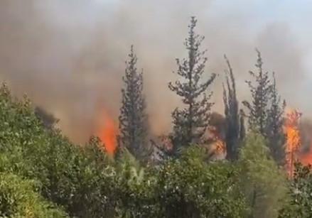 Vuur in de bergen ten zuiden van Jeruzalem weer opgelaaid