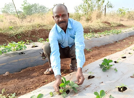 MAST Mokhada farmers