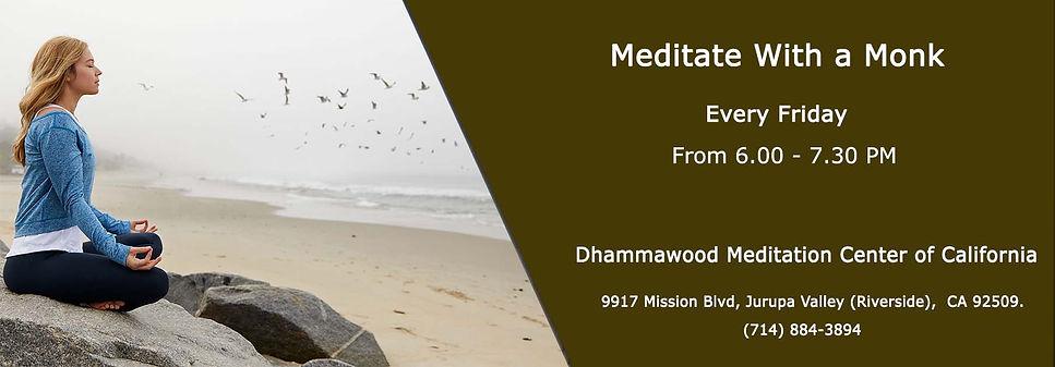 Dhammawood web cover 2 (1).jpg