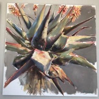 Aloe Oil Painting