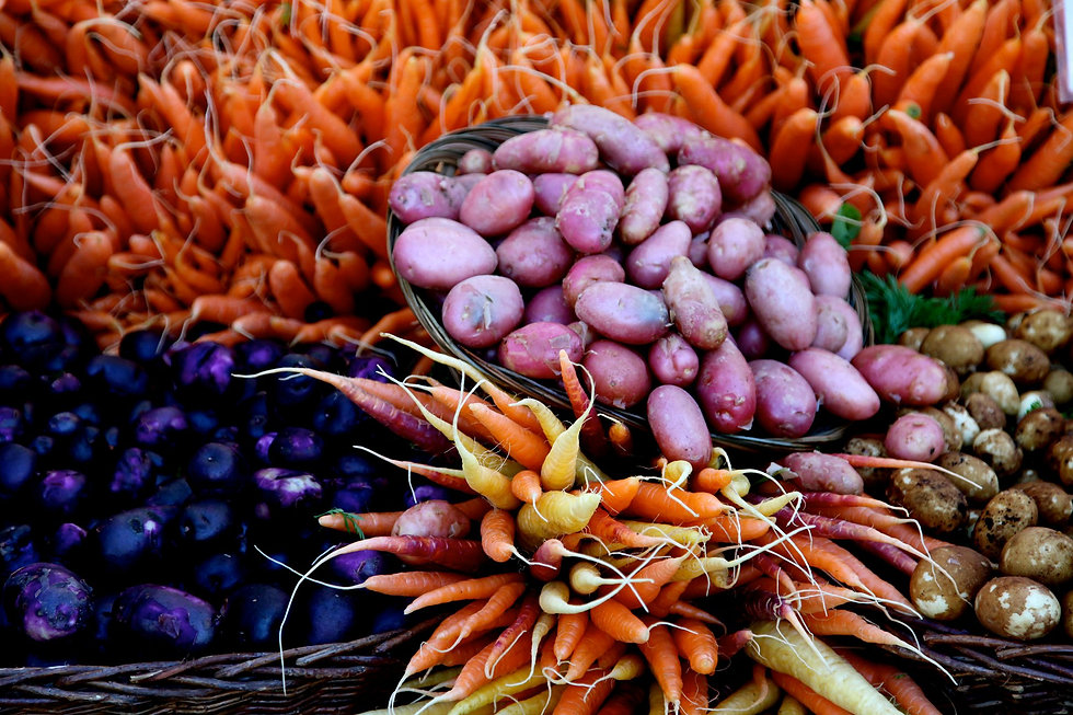 Sweet Leaf Organic Farm