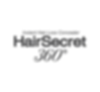 HS360 logo.png