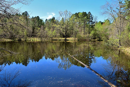 farm-pond.jpg