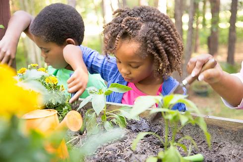 siblings-gardening.webp