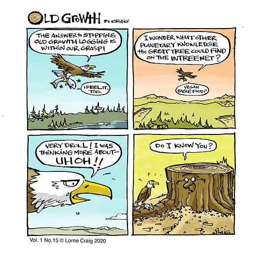 Old-growth-15-NSA.jpg