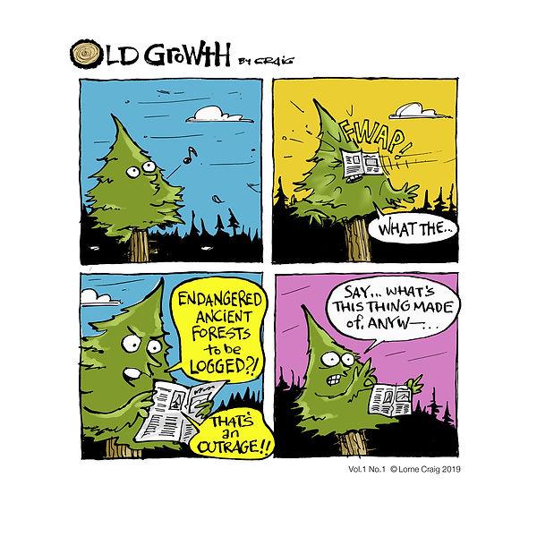 CRAIG-00445-Old-Growth1.jpg
