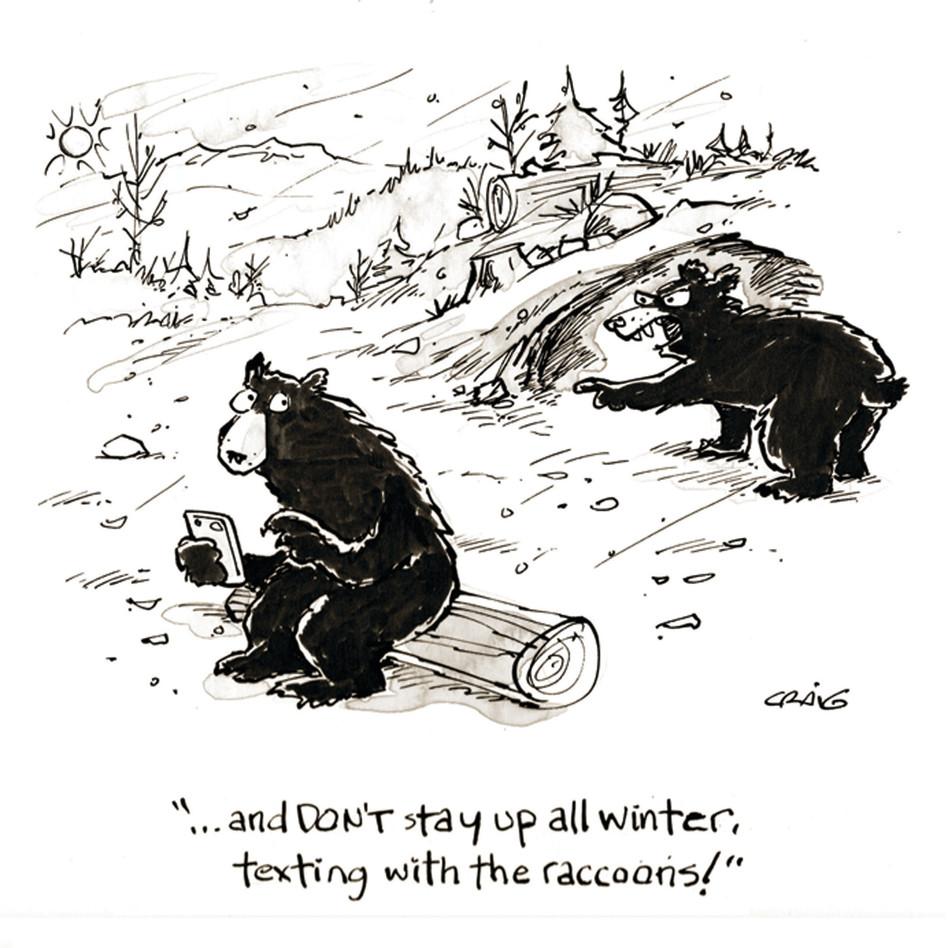 Card-11-01_Nov_Wash_Raccoons up Winter-8