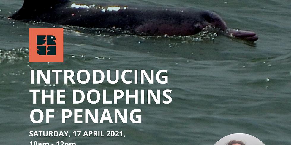 Introducing The Dolphins Of Penang - Dr Leela Rajamani