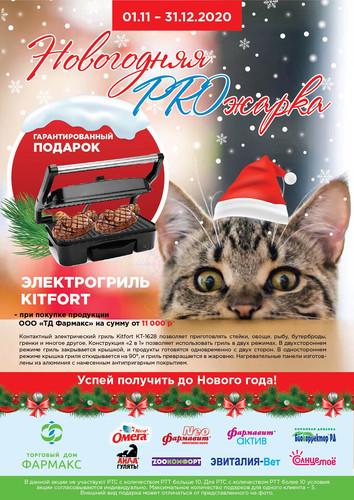 Новогодняя PROжарка_РФ.JPG