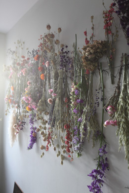 Dried Flower Wall