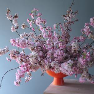 A bowl of Blossom