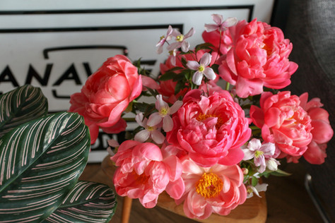 A bowl of Fully Blown Coral Charm Peonies