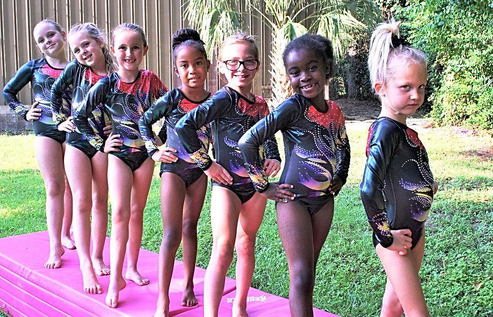 Panastics Gymnastics Panama City Gymnastics Panama City