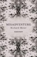Misadventure by Richard Meier – Review