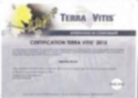 vignobles ricard engagement Terra Vitis