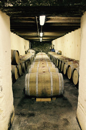Our wine is ageing slowly