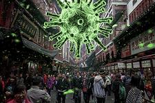 coronavirus.webp