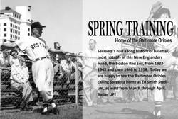 spring training slide