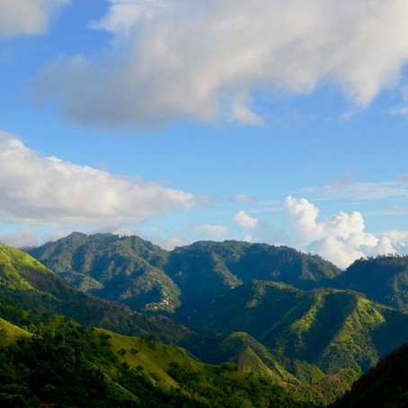 The Top 10 Remarkable Attractions of Portland, Jamaica (Pt 2)