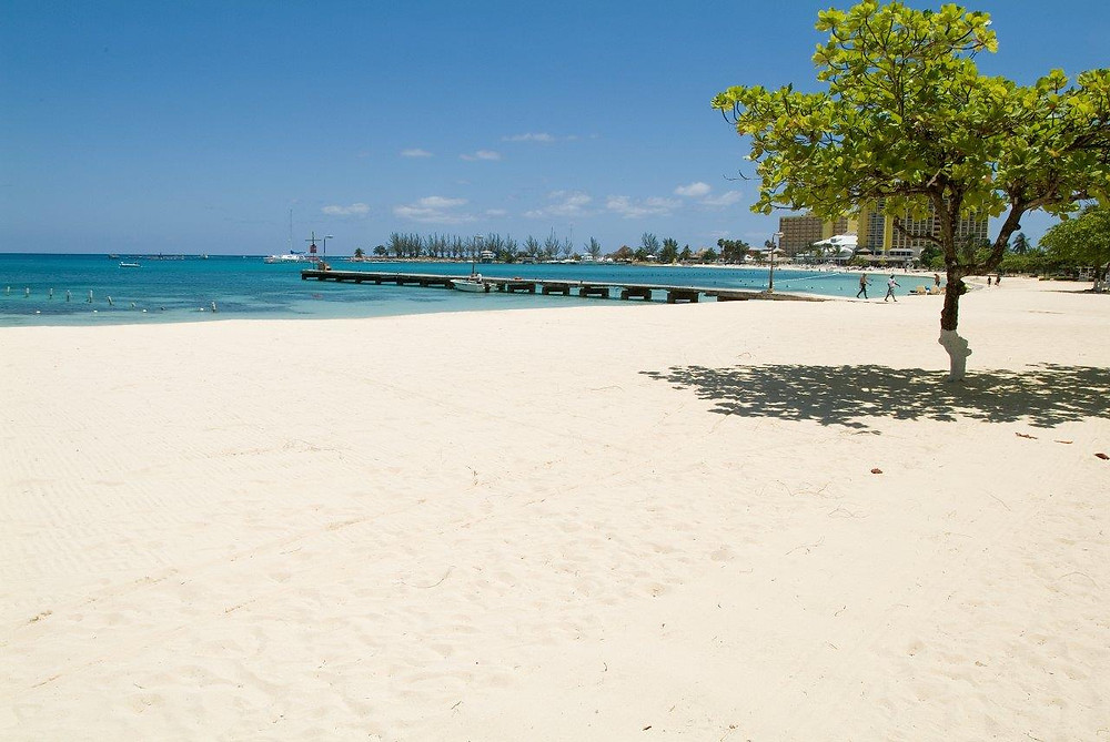 """Ocho Rios Bay Beach also referred to as """"Turtle Beach"""" is nestled between Sunset Jamaica Grande on the eastern side and Ocho Rios Cruise Ship pier on the western end. Its brilliant white sand, crystal clear water and captivating view of the Caribbean Sea are complemented by other amenities."""