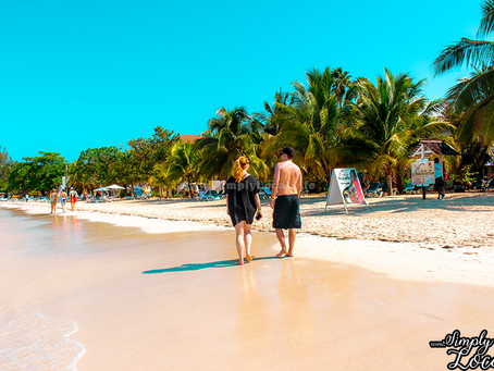 When is the Best Time of Year to Visit the Island Paradise of Jamaica?