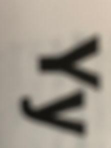 Y.jpg