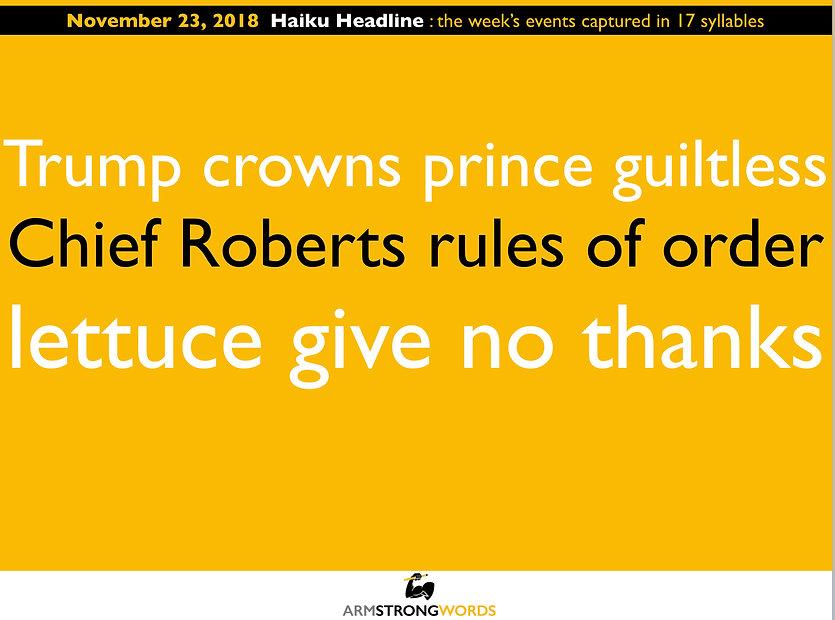Haiku Headline 112118.jpg