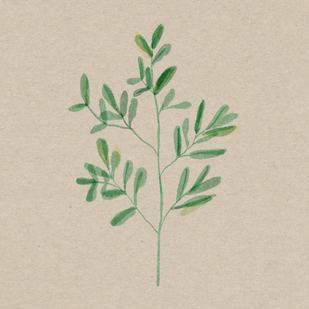 leafme 2