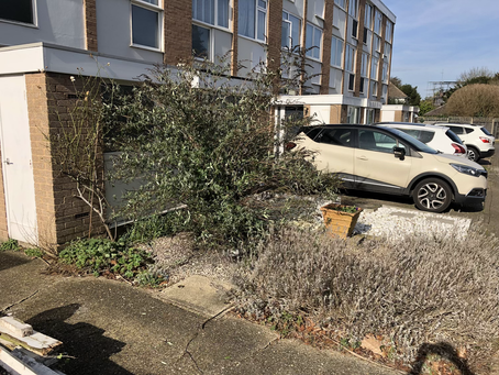 Don't be embarrassed of your front garden!