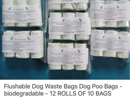 An extra tip! Poo bags 💩🐶