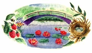 Lily Pond and Bridge