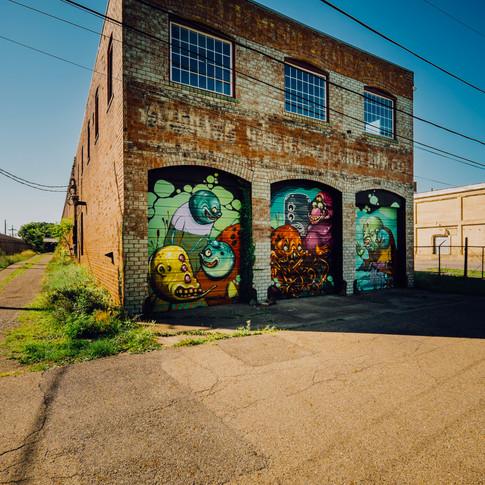 Main Street Modern Garage doors