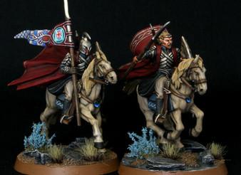 Rivendell Knights Captain & Banner