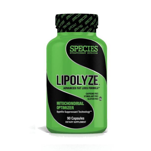 lipolyze-solo-1000x900.jpg