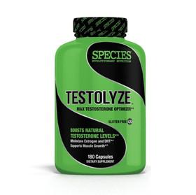 testolyze-solo-1000x900.jpg