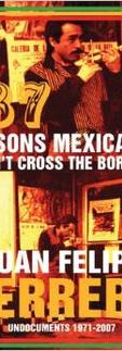 Reasons Mexicanos Can't Cross The Border by Juan Felipe Herrera