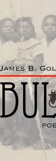BULL: The Journey of a Freedom Icon by James B. Golden