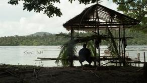 Island Cleanse  - Ch3