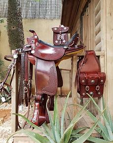 saddle_home_page.jpeg