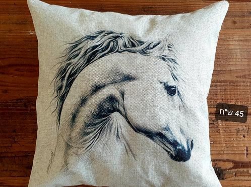 כריות סוסים