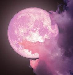 full pink moon.jpg