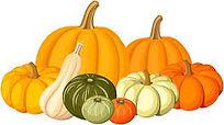 autumn pumpkin clipart - 1.jfif