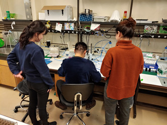 Two new PhD students joined the lab