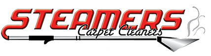 Steamers Carpet Cleaners Best Rated Carpet Cleaners