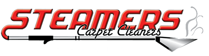 Steamers Carpet Cleaner Best Rated Carpet Cleaners Rogers Arkansas